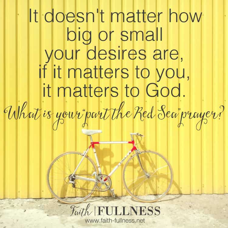 "It doesn't matter how big or how small the desires of your heart are, if it matters to you, it matters to God. What is your ""part the Red Sea"" prayer? 